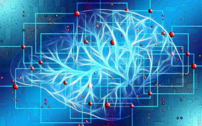 Ethikpreis zum Thema künstliche Intelligenz